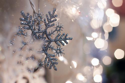 023-christmas-goodies-2