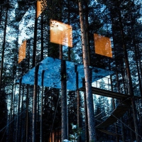 Great Atmosphere – Interesting tree house sweden