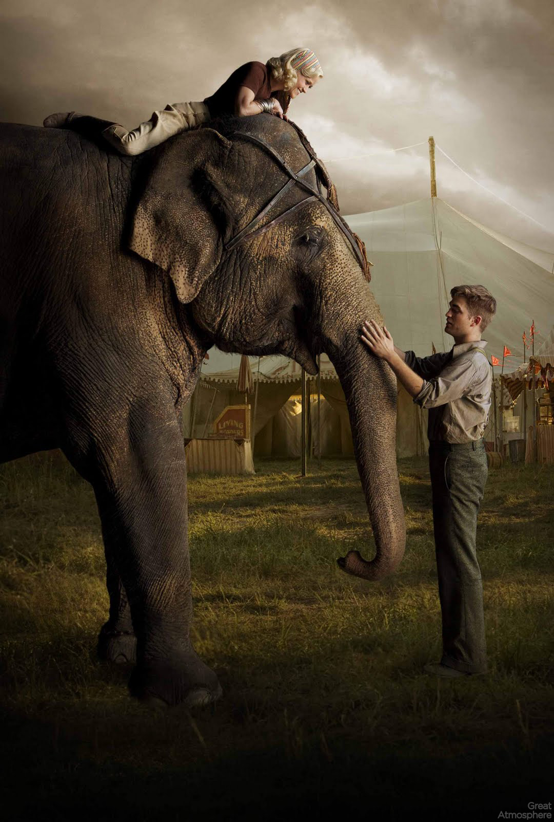 new york times book review water for elephants