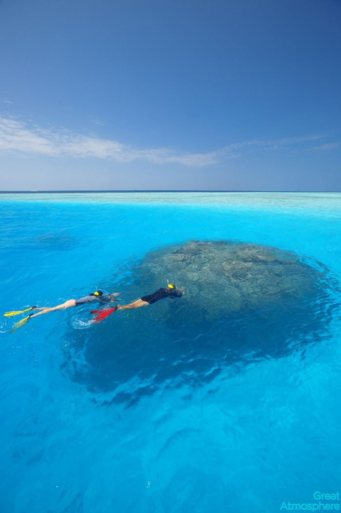 great_atmosphere_scuba_diving_ocean_travel_relaxation_172_1