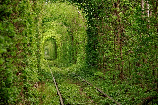 1-tunnel-of-love-ukraine-beautiful-pictures-nature-around-the-planet-great-atmosphere-photography