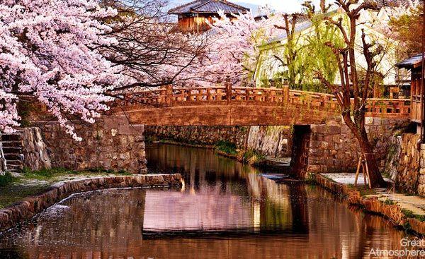 10-Channel-Omihachiman-Japan-cherry-blossoms-various-cities-world-10-beautiful-travel-destinations-landscapes