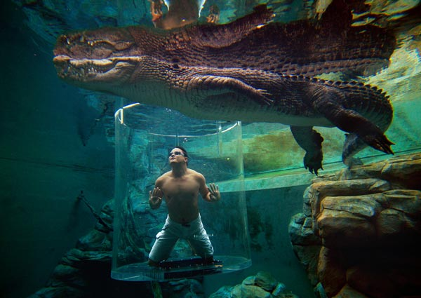 12-Crocosaurus-Cove-Australia-amazing-pools-that-you-will-like-to-dive-swimming-pool-photography