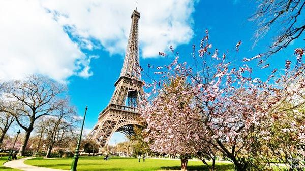 6-Paris-Frnce-cherry-blossoms-various-cities-world-beautiful-travel-destinations-landscapes