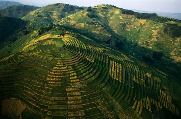 aerial-africa-11-Crops-on-terraces-Rwanda-amazing-nature