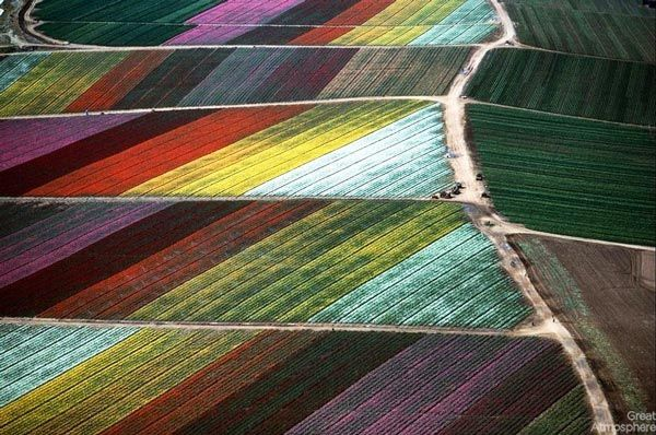 Amazing-fields-from-above-1-nature-landscapes-photography