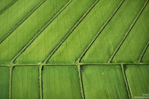 Amazing-fields-from-above-12-nature-landscapes-great-atmosphere-photography