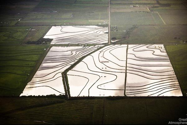 Amazing-fields-from-above-4-nature-landscapes-great-atmosphere