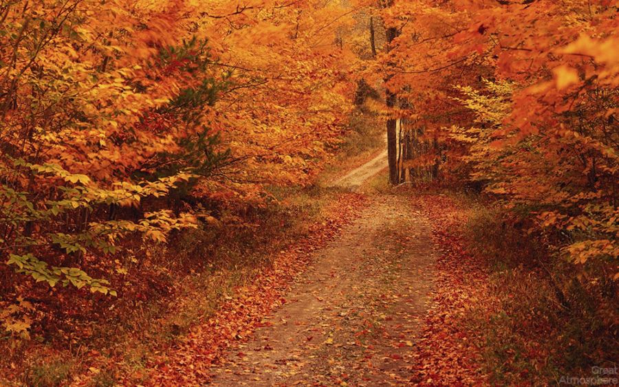 amazing-landscape-scenery-wallpaper-new-england-autumn-great-atmosphere-1