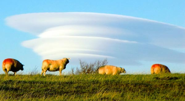 Amazing-lenticular-clouds-on-Earth-3-West-Yorkshire-England-great-atmosphere