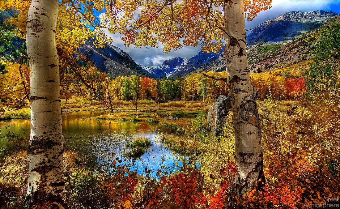 autumn-colored-trees-by-the-lake-and-mountains-landscapes-photography-nature-beautiful-great-atmosphere-223_1
