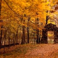 Great Atmosphere, Beautiful Autumn