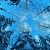 Great Atmosphere - blue winter