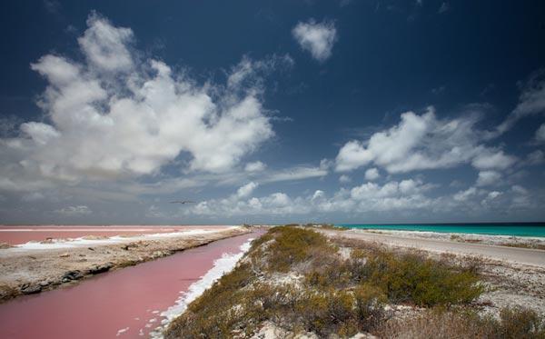 Bonaire-Dutch-Island-Caribbean-travel-destinations-great-atmosphere-photography-6