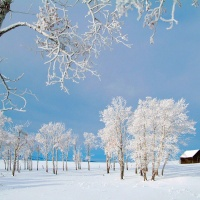 Great Atmosphere, winter landscape