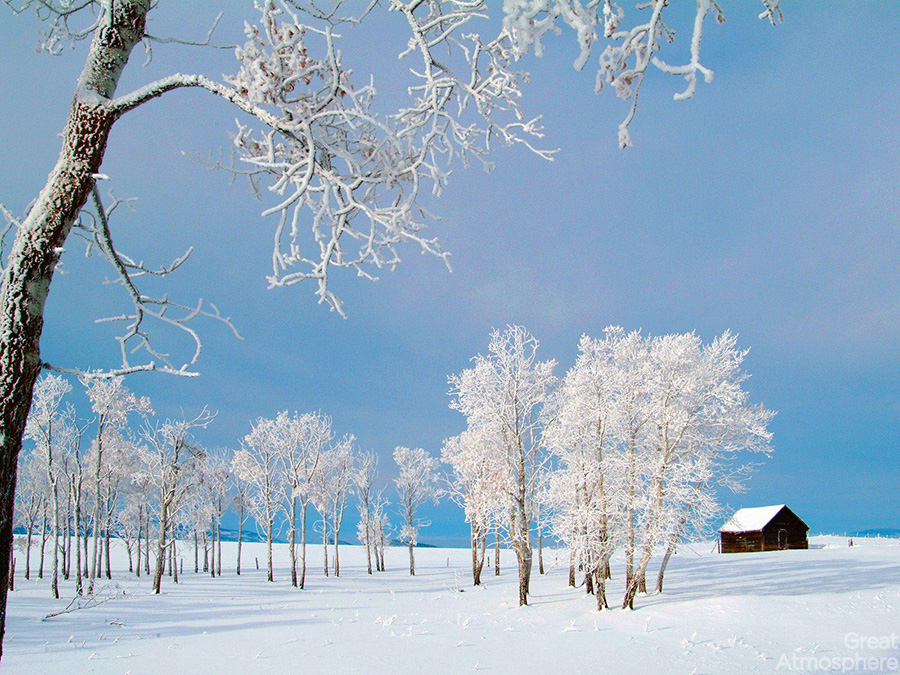 dreamy-snow-scenery-amazing-nature-landscape-great-atmosphere-211-1