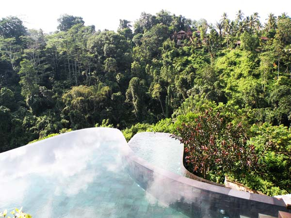 Impressive pools in tropical forest great atmosphere for Green garden pool jakarta