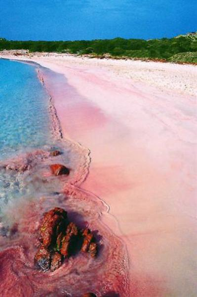 pink-beach-travel-destinations-great-atmosphere-photography-8