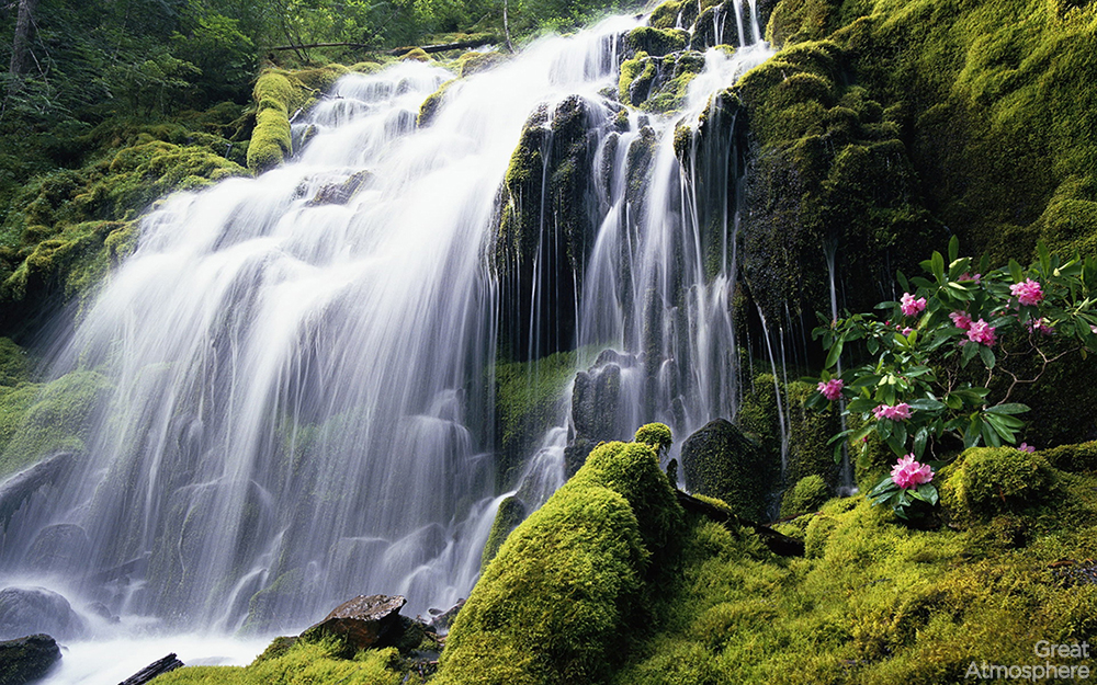 summer-waterfall-moss-green-nature-landscape-great-atmosphere-beautiful-photography--226_1