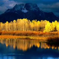 Great Atmosphere, autumn, yellow, reflection