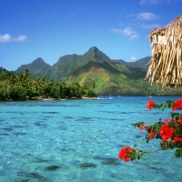 Amazing, Summer, View, Bora Bora