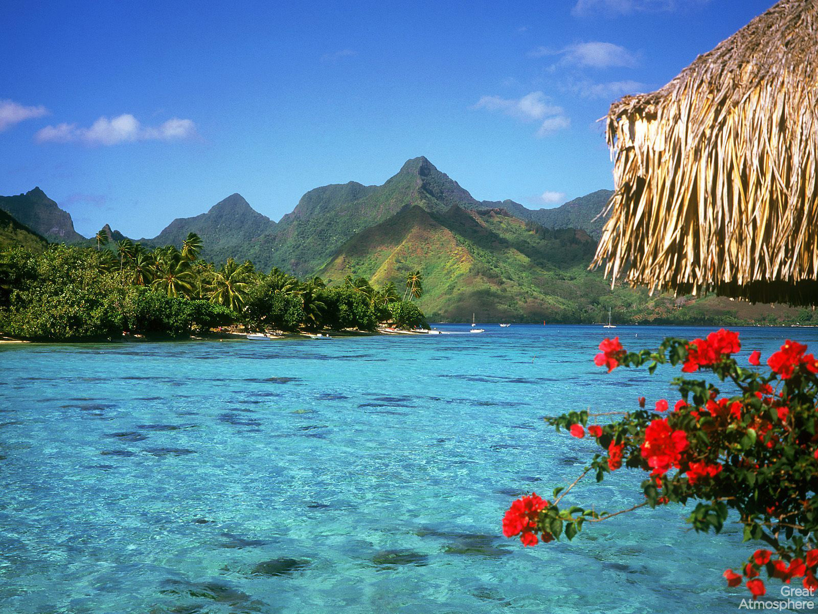 Top Landscape Summer - bora-bora-summer-beach-travel-destinations-2013-beautiful-landscapes-photography-wallpaper-great-atmosphere-250  2018_518343.jpg?w\u003d1600\u0026h\u003d1200